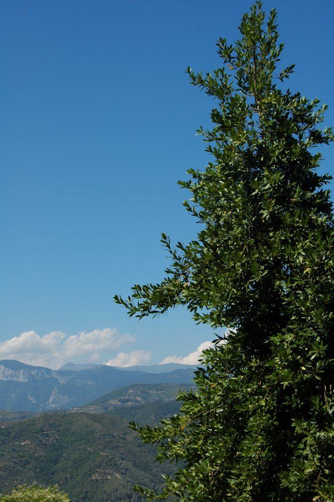 Perinaldo (IM): una vista verso le Alpi